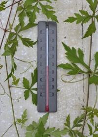 Термометр деревянный для дома и улицы Grey AJS Blackfox фото.jpg