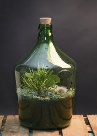 Флорариум стеклянный для цветов бутылка 10 литров AGG66 Esschert Design фото