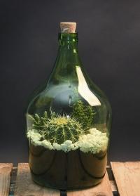 Стеклянный флорариум для цветов бутылка 5 литров AGG65 Esschert Design фото