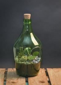 Флорариум стеклянный для цветов бутылка 3 литра AGG64 Esschert Design фото.jpg