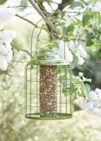 Кормушка для птиц для орехов с защитой от белок Premier ChapelWood фото