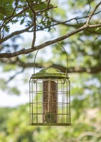 Кормушка для птиц для семечек с защитой от белок Premier Seed by ChapelWood фото