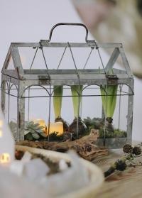 Декоративная настольная мини теплица Green house ZB21 Esschert Design фото