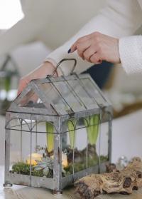 Декоративная настольная мини теплица Green house ZB22 Esschert Design фото