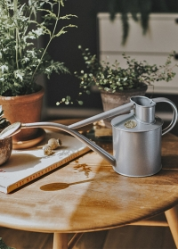 Английская металлическая лейка для цветов Rowley Ripple Titanium Haws фото