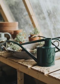 Английская лейка для цветов металлическая 1 л. Rowley Ripple Green от Haws фото.jpg