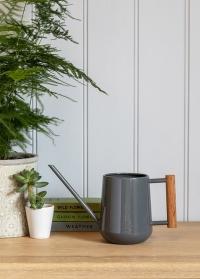 Лейка металлическая для комнатных цветов Charcoal Garden Suppliers Burgon Ball фото