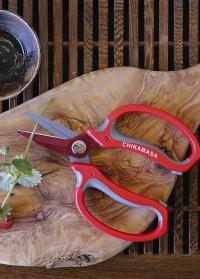 Японские флористические ножницы Chikamasa в подарок флористу от Consta Garden фото