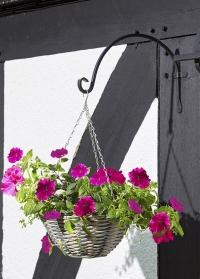 Настенный кронштейн полукруглый для цветочного кашпо Round Smart Garden фото