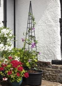 Опора-обелиск для вьющихся растений Spiral Obelisk Smart Garden фото