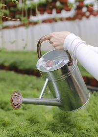 Лейка садовая для полива цветов 4.5 л. Galvanised Steel Smart Garden фото