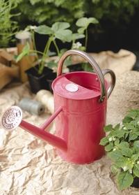 Лейка садовая металлическая для полива цветов 4.5 л. Coral Pink Smart Garden фото