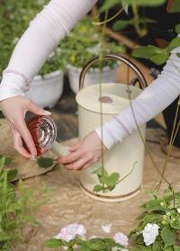 Лейка металлическая садовая для цветов 4.5 л. Cream Smart Garden фото