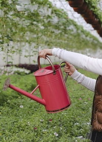 Металлическая садовая лейка для цветов 9 л. Pink Smart Garden фото