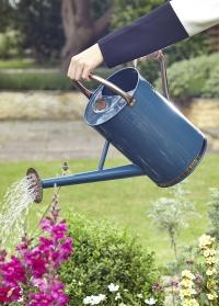 Металлическая садовая лейка для цветов 9 л. Blue Smart Garden фото