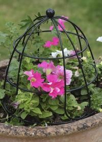 Держатель для небольших вьющихся растений Beehive 30 см. Smart Garden фото