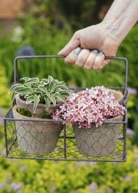 Набор цветочных горшков из состаренной терракоты в металлической корзинке AT12 Esschert Design фото