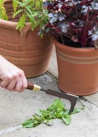 Нож для удаления сорняков между плиткой National Trust от Burgon & Ball (Великобритания) фото
