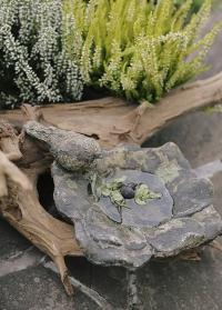 Декоративная купальня для птиц из состаренной керамики Aged Ceramic AC137 Esschert Design фото