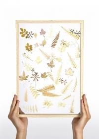 Настенная стеклянная рамка для гербария 30х42 см ML035 Esschert Design фото