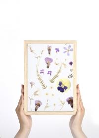 Декоративная стеклянная рамка для гербария 30х21 см ML034 от Esschert Design фото