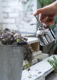 Пульверизатор для опрыскивания растений металлический Silver TG270 Esschert Design фото