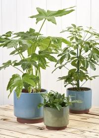 Керамическое кашпо для комнатных растений Malibu Blue стиль бохо Burgon & Ball фото
