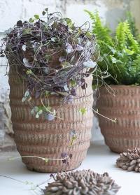 Терракотовое кашпо для комнатных цветов Jillia 21,5 см Lene Bjerre фото