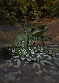 Металлическая фигурка на солнечной батарее Лягушка для сада и дачи от Smart Garden фото