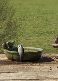 Садовая купальня-кормушка для птиц керамическая овальная Green FB404 от Esschert Design фото