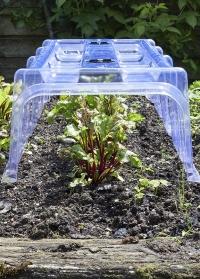 Пластиковая теплица-туннель для укрытия рассады  Clear Cloche Smart Garden фото