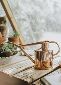 Английская лейка для цветов HAWS Rowley Ripple Copper & Copper фото