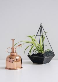 Медный опрыскиватель для цветов HAWS Smethwick Spritzer Copper фото