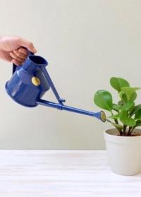 Английская пластиковая лейка для комнатных цветов 0,5 л. HAWS The Langley Sprinkler Blue фото