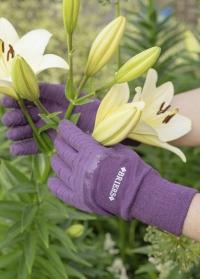 Перчатки садовые с латексным покрытием Multi-Grip All Rounder Berry от Briers фото