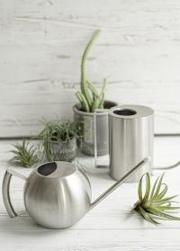 Стильная лейка из нержавеющей стали для комнатных растений Шар 1.3 л. TG295 Esschert Design фото