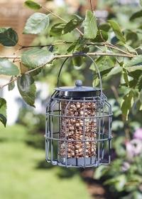 Компактная кормушка с колбой для орехов для птиц с защитой от белок Compact Peanut Smart Garden фото
