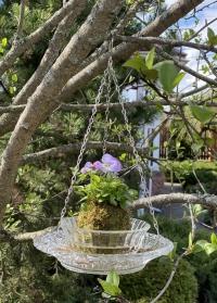 Кормушка для птиц стеклянная для дачи и сада FB308 Esschert Design фото