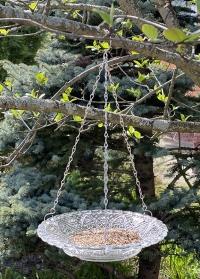 Подвесная кормушка для птиц стеклянная тарелка FB309 Esschert Design фото