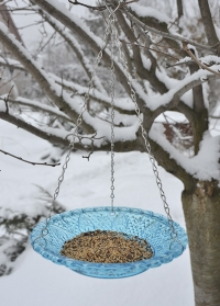 Кормушка для птиц стеклянная тарелка FB331 Blue Esschert Design фото