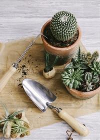 Садовые ручные инструменты Burgo Ball фото