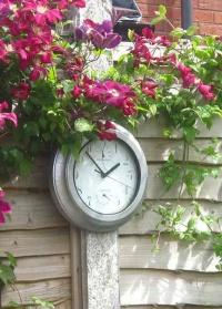 Уличные садовые часы Galvanized Effect Briers