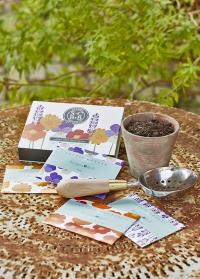 Подарочный набор семян «Съедобные цветы» Burgon & Ball