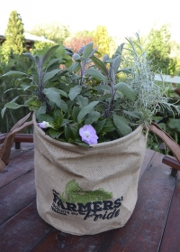 Джутовое кашпо для растений «Фермер» Esschert Design FP20, размер М фото