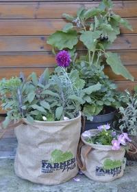 Кашпо для растений джутовое «Фермер» Esschert Design FP021 размер L картинка