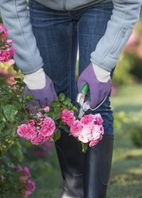 Перчатки садовые с нитрилом Plantation Violet AJS-Blackfox