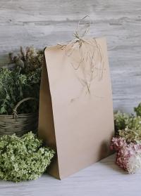 Пакет подарочный из крафта Consta Garden фото.jpg