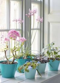 Набор кашпо для цветов Sophie Conran Collection Burgon & Ball