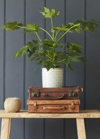 Кашпо керамическое, M  Tuscany Grey Indoor Pots Collection Burgon & Ball