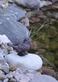 Декоративная фигурка птички на камне Esschert Design TT153 фото